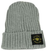 Planet Eclipse Worker Beanie grau